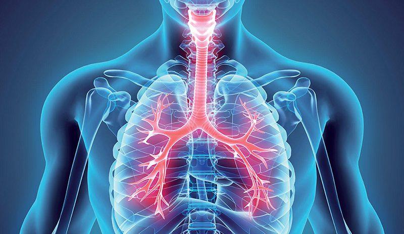 como evitar problemas respiratórios no verão